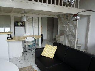 Appartement de charme 85 m2 calme tres lumineux a 15 mn du centre ville de Lyon