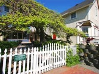 Treehouse Suite - Downtown - Walking Distance to Ferry, Stores, Restaurants!