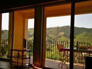 COLLIOURE Villa climatisee, situation unique, residence privee avec piscine