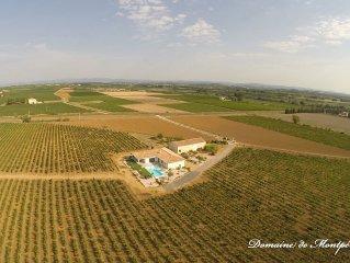 Villa contemporaine domaine viticole avec piscine à débordement