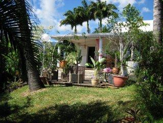 Belle villa créole vue océan exceptionnelle-Piscine-Jacousi - Ouest de l île