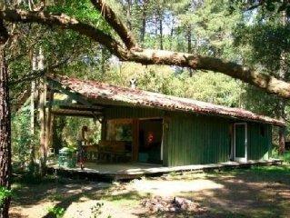Maison de charme en bois au coeur de la forêt landaise proche du Lac d'Hossegor