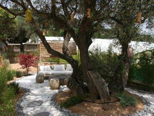 Grande bastide piscine,SPA, terrasse, jardin, accès WIFI à 5 min de Sanary