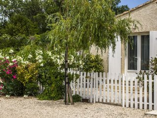 Very nice rental maussane in the valley of Les Baux
