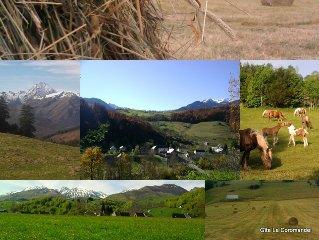 Chalet de montagne spacieux et tout confort,  4*, proche de Payolle, Pic du midi