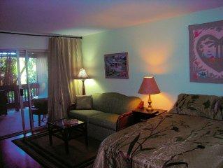 Studio With Kitchenette, Queen bed & sofa/sleeper, Free WIfi & Netflix!