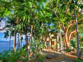 2BD, private peninsula, waterfront, dock for snorkeling, close to Soper's Hole