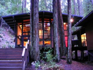 Magical Redwood Retreat