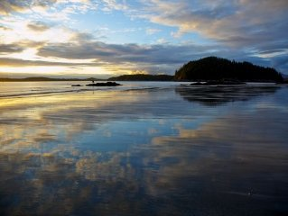 Beachfront Tofino- For Families!