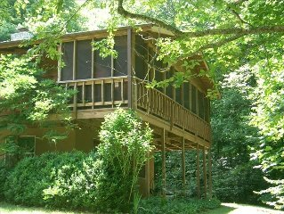 Asheville, AT, Rocky Fork, Family & Pet Friendly, Fireflies, Private Forest