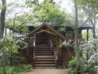 Green Oak Cabin, nestled on a quiet street, 3 mins from Wintergreen's 'downtown'