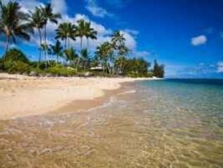 2 BR Luxury Furnished  Condo in Waialua - Steps to the Ocean**
