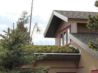 Mountain meets Modern overlooking Live Roof in We