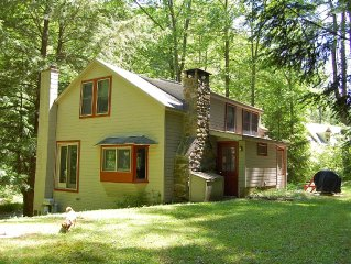 Cozy Cottage In The Berkshire Woods Minutes From Butternut, Steps To Lake Buel
