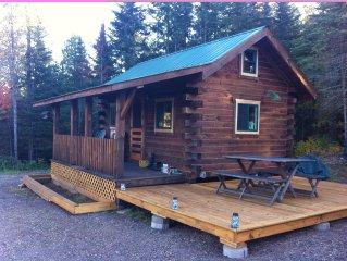 Cozy cabin on a beautiful North Shore Minnesota lake
