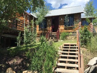 Hilltop Mountain Retreat on 5 acres but downtown!