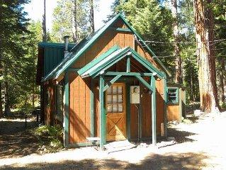 Pine Cone Quiet 1 bedroom retreat