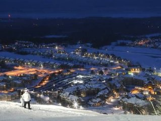 900 Meters From Blue Mountain And The Blue Mtn Village
