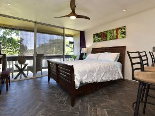 Newly Remodeled with Ocean View, 5 min Walk to Beach!