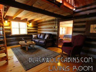 THE ROMANTIC GETAWAY YOU DESERVE! - ANTIQUE CABIN - ASHEVILLE - BILTMORE ESTATE
