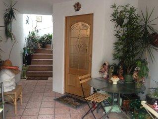 Peaceful Studio  With Zen Garden