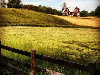 Working Farm in Central VA Wine Region, 35 Minutes from UVA.