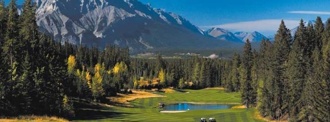 Choose Blackstone as your basecamp as you explore the area's 6 golf courses.