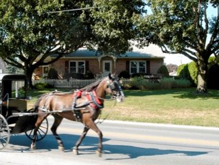 THE AMISH GUEST HOUSE (home away from home)WALK TO 50 SHOPS AND RESTAURANTS