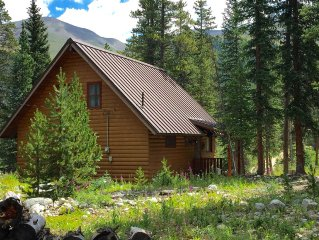 The perfect family friendly cabin in the woods, minutes to downtown Breckenridge
