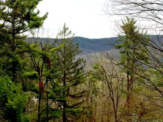 Great Barrington on 'The Hill': Private location yet close to it all!