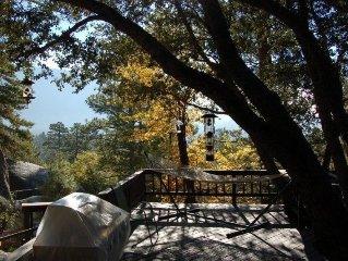 Falcon Rest Lodge: upscale privacy, views, true mountain retreat w/ hot tub