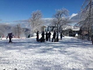 Beautiful Mountain Chalet new to rental market in Wintergreen.