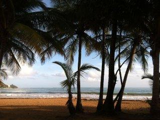 Beach View- Oceanfront - Playa Azul- Many Ameniti