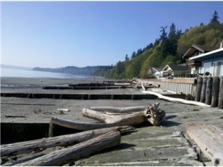 Beachfront cabin, no bank waterfront close to Langley-eagles & whales