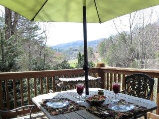 Hummingbird Hideaway -Pets, WIFI, Pond to fish/swim, hiking trails, Fontana Lake