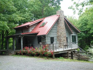 Cabin: 11 acres, tree fort, 1 mile to DuPont, close to Brevard & Hendersonville
