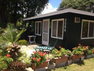 USA Hawaii Kauai Coconut Coast Kapaa Downtown Cottage Vacation Rental Ohia Kai