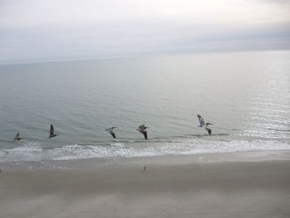 Beautiful Ocean View Condo