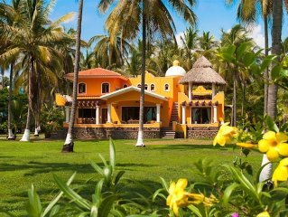 Surfing, Sea Turtles, Pristine Beach and Pool at our New Tropical Villa