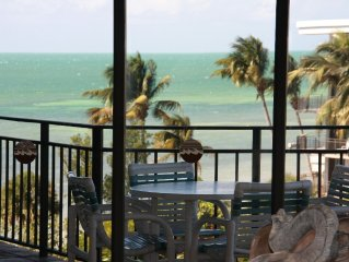Tom's Chicken Coop:  Nice Ocean View, Pool, Renovated, Close to Beach