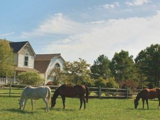 "Waterfront Horse Farm Estate ""A Slice of Heaven on Earth"" Fireplace awaits"