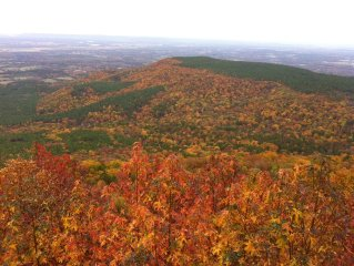 Experience the Magic of Mt Nebo