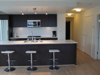 Spacious New 2bd/2ba Apt * Central Richmond