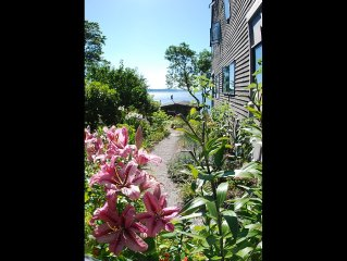 """The Perch"" 1930's hillside cottage 2 blocks to Beach Easy to Airport & stadiums"
