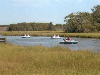 Retreat on Swan River-Serenity, Kayaking & Bird Watching- Book for the fall!