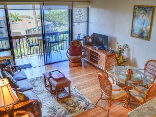 Hard To Beat Oceanview 2Br/2Ba with new A/C
