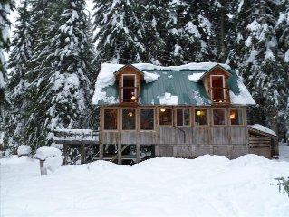 Mt. Hood Trillium Lake Cabin, 3 BR, Sauna, Wifi, Mtn. View