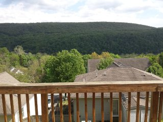Paradise View OF THE Shenandoah Mountains Wineries and Breweries!!
