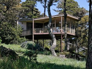 Tree Top Glass Home in the Heart of the National Seashore