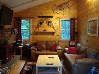 Mount Snow ski house